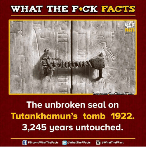 Dank, Image, and Images: WHAT THE FCK FACTS  Image Source Rare Historical Photos  The unbroken seal on  Tutankhamun's tomb 1922.  3,245 years untouched.  WhatTheFFact  FB.com/WhatThe Facts  @WhatTheFFacts