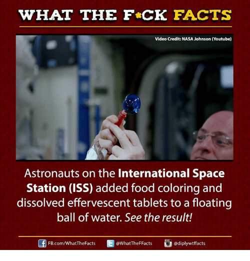 Facts, Food, and Memes: WHAT THE FCK FACTS  Video Credit: NASA Johnson (Youtube)  Astronauts on the International Space  Station (ISS) added food coloring and  dissolved effervescent tablets to a floating  ball of water. See the result!  E @What The FFacts  FB.com/WhatThe Facts  adiplywtffacts
