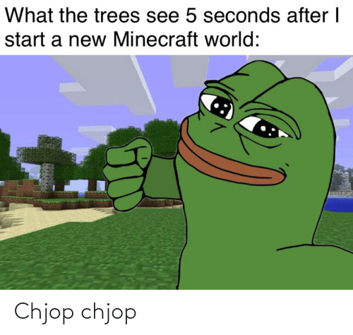 minecraft: What the trees see 5 seconds after I  start a new Minecraft world: Chjop chjop