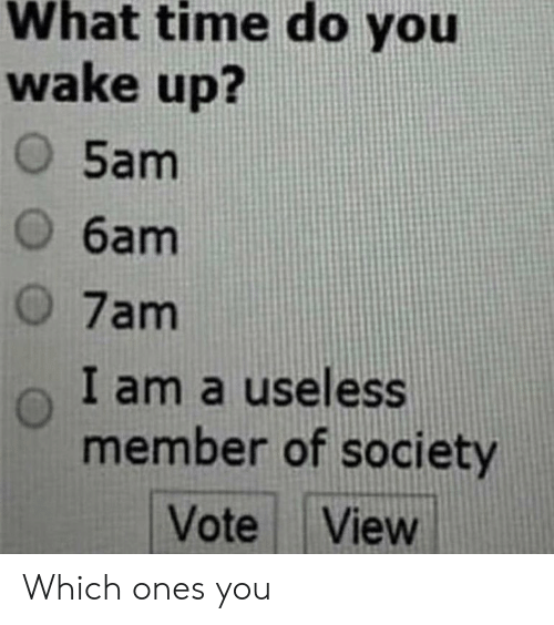 Time, One, and Wake: What time do you  wake up?  O 5am  O 6am  O 7am  I am a useless  member of society  Vote View Which ones you