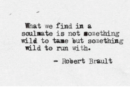 Run, Wild, and Soulmate: What we find in a  soulmate is not sonething  wild to tame but sonething  wild to run with.  - Robert Brault