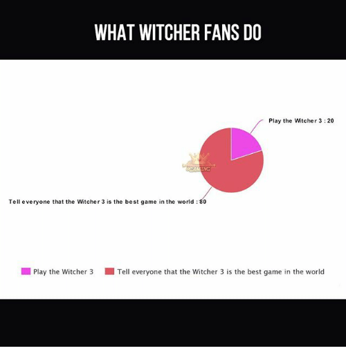 Memes, Best, and Game: WHAT WITCHER FANS DO  Play the Witcher 3:20  Tell everyone that the Witcher 3 is the best game in the world 80  l Play the witcher 3 Tell everyone that the witcher 3 is the best game in the world
