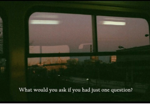 Ask, One, and You: What would you ask if you had just one question?