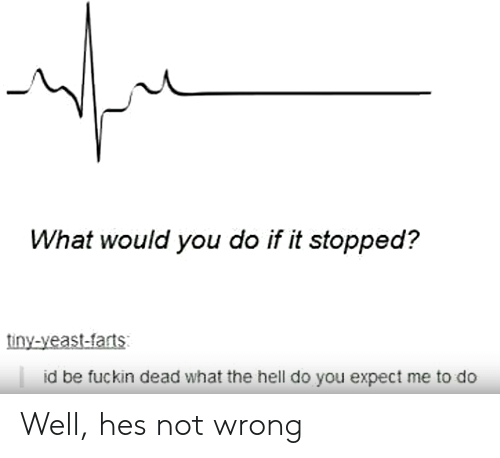 what would you do: What would you do if it stopped?  tiny-yeast-farts  id be fuckin dead what the hell do you expect me to do Well, hes not wrong