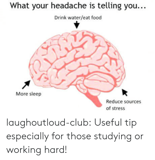 Club, Food, and Tumblr: What your headache is telling you...  Drink water/eat food  More sleep  Reduce sources  of stress laughoutloud-club:  Useful tip especially for those studying or working hard!