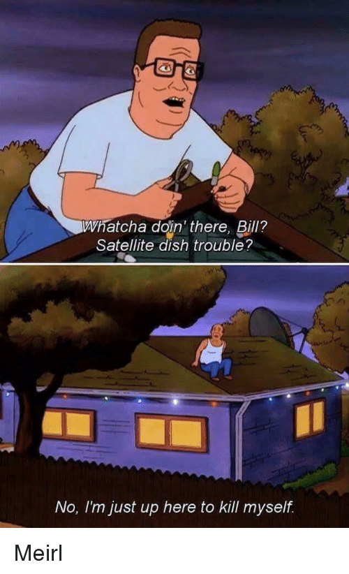 Dish, MeIRL, and Satellite: Whatcha doin' there, Bill?  Satellite dish trouble?  No, Im just up here to Kill myself Meirl
