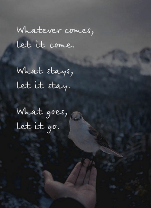 Let It Go: Whatever comes,  Let it come.  What stays,  Let it stay.  What goes  Let it go.