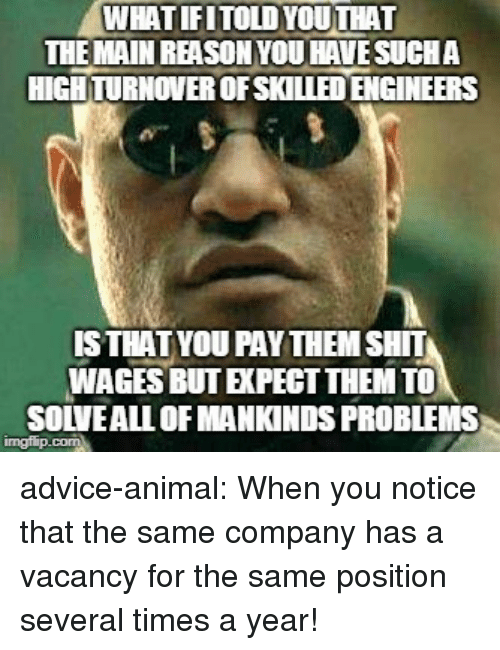 Advice, Shit, and Tumblr: WHATIFITOLDYOUTHAT  THE MAIN REASONYOU HAVESUCHA  HIGH TURNOVER OFSKILLED ENGINEERS  ISTHATYOU PAYTHEM SHIT  WAGES BUT EXPECT THEM TO  SOLVEALL OF MANKINDS PROBLEMS advice-animal:  When you notice that the same company has a vacancy for the same position several times a year!