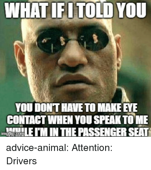 tome: WHATIFUTOLD YOU  YOU DONT HAVE TO MAKE EYE  CONTAGT WHEN YOU SPEAK TOME  M IN THE PASSENGER SEAT advice-animal:  Attention: Drivers