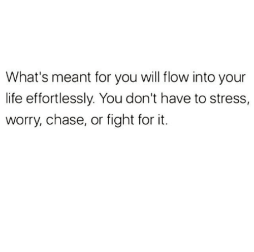 Life, Memes, and Chase: What's meant for you will flow into your  life effortlessly. You don't have to stress,  worry, chase, or fight for it.