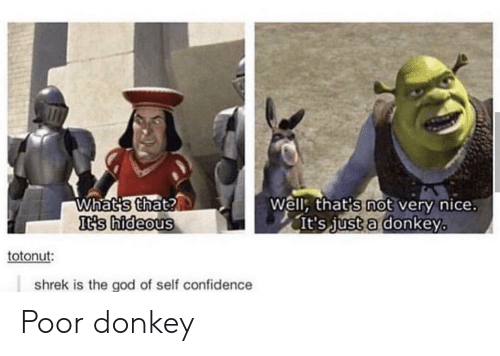 Confidence, Donkey, and God: Whats that?  It's hideous  Well, that's not very nice.  It's just a donkey  totonut:  shrek is the god of self confidence Poor donkey