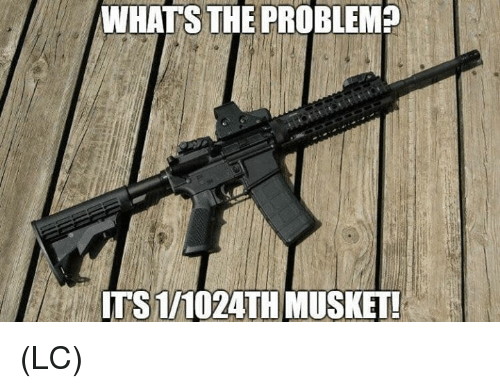 Memes, 🤖, and Whats: WHATS  THE  PROBLEM  TS 1/1024TH MUSKET (LC)