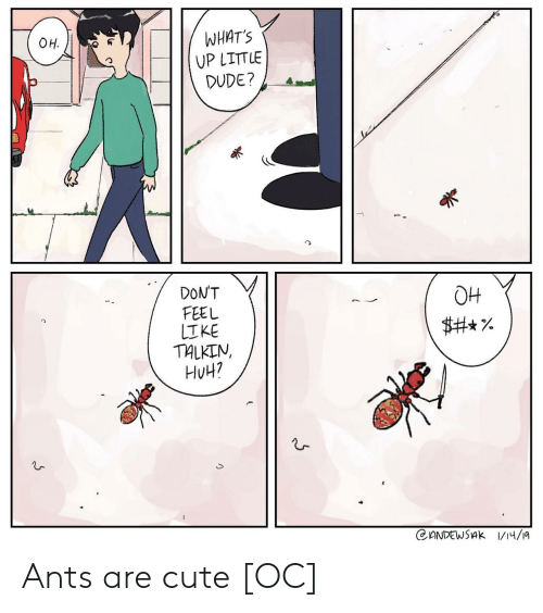 Cute, Dude, and Huh: WHAT'S  UP LITTLE  DUDE?  OH.  DONT  FEEL  OH  TALKIN,  HuH? Ants are cute [OC]