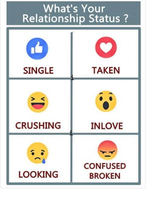 Confused, Memes, and Taken: What's Your  Relationship Status?  SINGLE  TAKEN  CRUSHING  INLOVE  CONFUSED  BROKEN  LOOKING