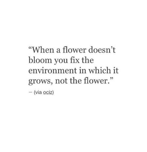 """Flower, Via, and You: """"When a flower doesn't  bloom you fix the  environment in which it  grows, not the flower.""""  - (via ociz)"""