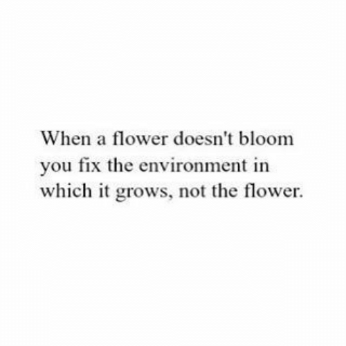 Flower, You, and Bloom: When a flower doesn't bloom  you fix the environment in  which it grows, not the flower.