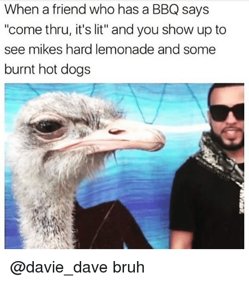 """Bruh, Dogs, and It's Lit: When a friend who has a BBQ says  """"come thru, it's lit"""" and you show up to  see mikes hard lemonade and some  burnt hot dogs @davie_dave bruh"""