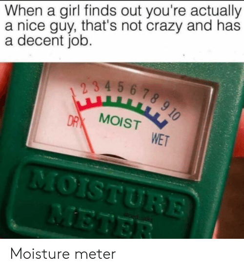 Crazy, Girl, and Moist: When a girl finds out you're actually  a nice guy, that's not crazy and has  a decent job.  2 3 4 5 6 78 9 10  DRX MOIST  WET  MOISTURE  METER  oed ralks Moisture meter
