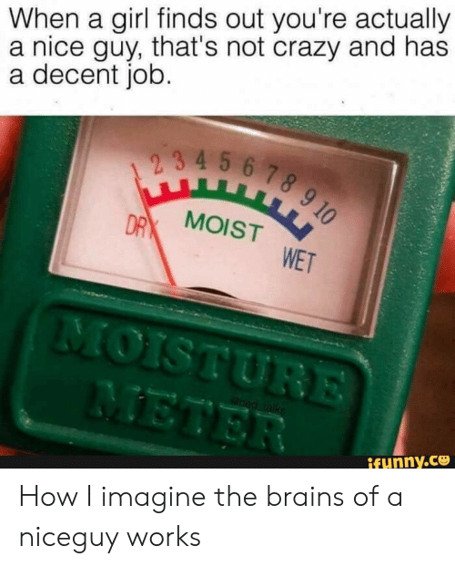 Brains, Crazy, and Girl: When a girl finds out you're actually  a nice guy, that's not crazy and has  a decent job.  2 3 4 5 6 7 8 9 10  DRX MOIST  WET  MOISTURE  METER  oed raliks  ifunny.co How I imagine the brains of a niceguy works