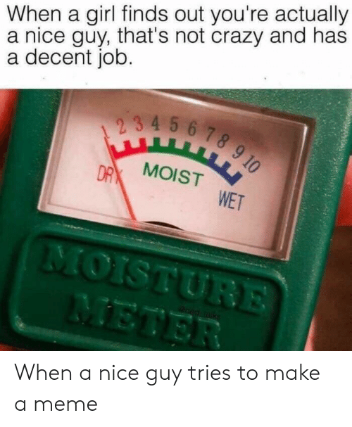 Crazy, Meme, and Girl: When a girl finds out you're actually  a nice guy, that's not crazy and has  a decent job.  23 4 5 6 78 9 10  DR MOISTWET  MOISTURE  METER  oed raks When a nice guy tries to make a meme