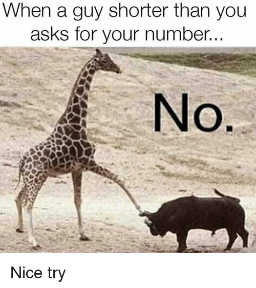 Dank, Nice, and Asks: When a guy shorter than youu  asks for your number.  No Nice try