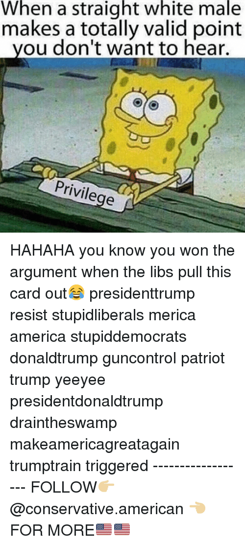 America, Memes, and American: When a straight white male  makes a totally valid point  you don't want to hear.  Privilege HAHAHA you know you won the argument when the libs pull this card out😂 presidenttrump resist stupidliberals merica america stupiddemocrats donaldtrump guncontrol patriot trump yeeyee presidentdonaldtrump draintheswamp makeamericagreatagain trumptrain triggered ------------------ FOLLOW👉🏼 @conservative.american 👈🏼 FOR MORE🇺🇸🇺🇸