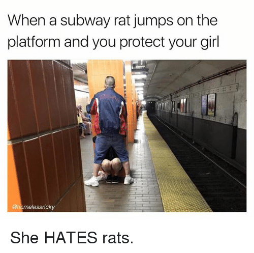 Memes, Subway, and Girl: When a subway rat jumps on the  platform and you protect your girl  @homelessricky She HATES rats.