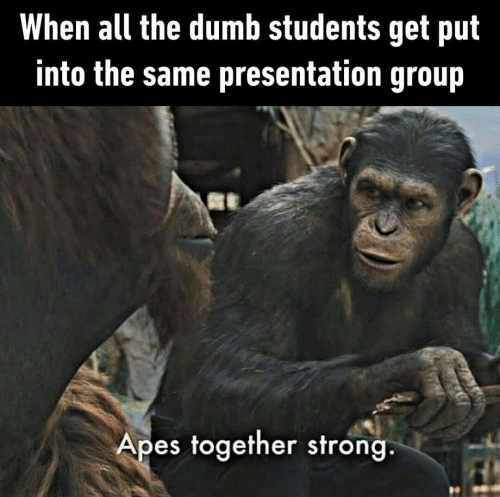 The Dumb: When all the dumb students get put  into the same presentation group  Apes together strong.