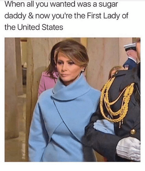 Memes, Sugar, and 🤖: When all you wanted was a sugar  daddy & now you're the First Lady of  the United States