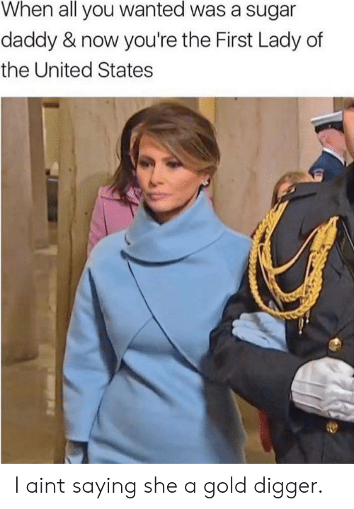 Gold Digger, Sugar, and United: When all you wanted was a sugar  daddy & now you're the First Lady of  the United States I aint saying she a gold digger.
