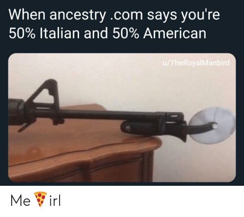 italian: When ancestry .com says you're  50% Italian and 50% American  /TheRoyalManbird Me🍕irl