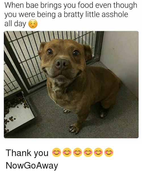 Bae, Food, and Thank You: When bae brings you food even though  you were being a bratty little asshole  all day Thank you 😊😊😊😊😊😊 NowGoAway