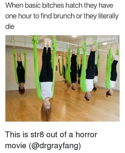 Memes, Movie, and Basic Bitches: When basic bitches hatch they have  one hour to find brunch or they literally  die  drgrayfang This is str8 out of a horror movie (@drgrayfang)
