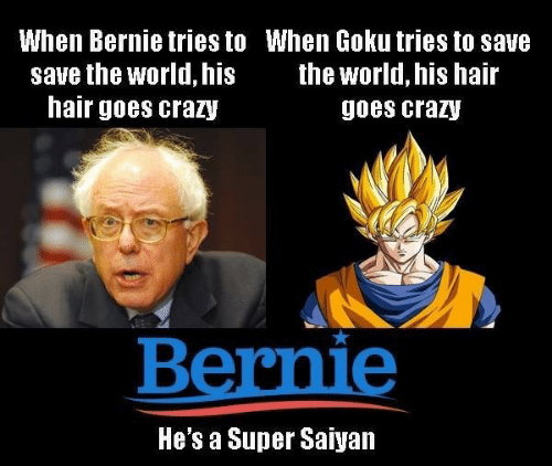 Crazy, Goku, and Super Saiyan: When Bernie tries to When Goku tries to save  the world, his hair  save the world, his  hair goes crazy  goes crazy  Bernie  He's a Super Saiyan