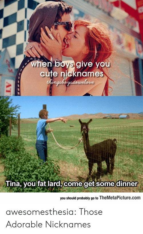 Should Probably: when boys give you  cute nicknames  Chenguberdawelone  Tina, you fat lard, come getsome dinner  you should probably go to TheMetaPicture.com  AT awesomesthesia:  Those Adorable Nicknames