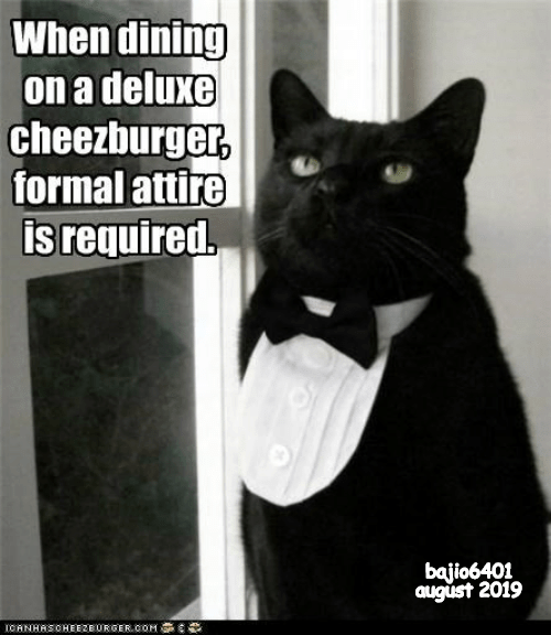 Com, August, and Cheezburger: When dining  on a deluxe  cheezburger,  formal attire  is required.  bajio6401  august 2019  ICANHASOHEEZBURGER COM