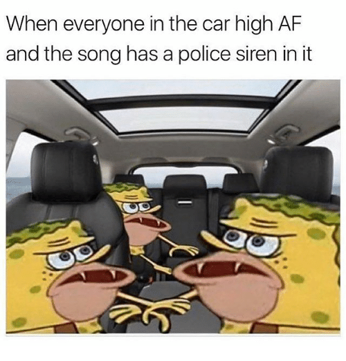 Af, Memes, and Police: When everyone in the car high AF  and the song has a police siren in it
