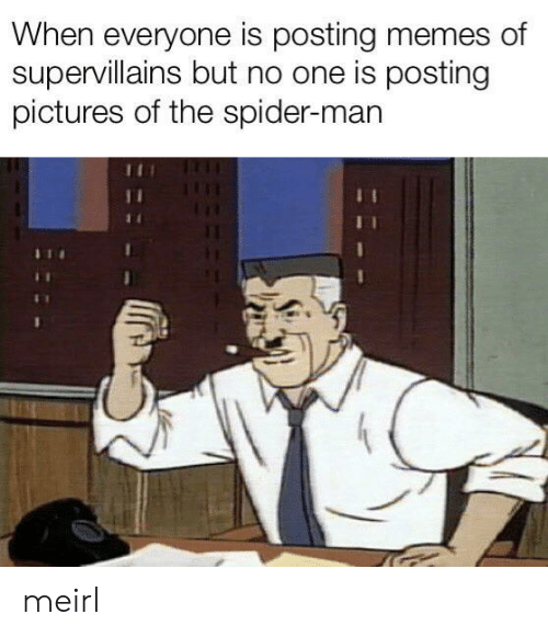 Memes, Spider, and SpiderMan: When everyone is posting memes of  supervillains but no one is posting  pictures of the spider-man meirl