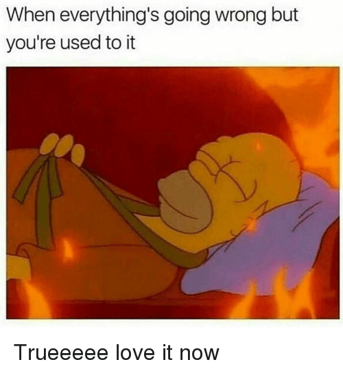 Funny, Love, and Now: When everything's going wrong but  you're used to it Trueeeee love it now