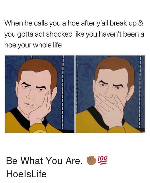 Hoe, Life, and Break: When he calls you a hoe after y'all break up &  you gotta act shocked like you haven't been a  hoe your whole life  2 Be What You Are. ✊🏾💯 HoeIsLife