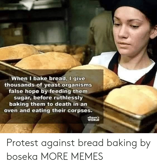 Dank, Memes, and Protest: When I bake bread, I give  thousands of yeast organisms  false hope by feeding them  sugar, before ruthlessly  baking them to death in an  oven and eating their corpses.  eBgum's  WERLD Protest against bread baking by boseka MORE MEMES