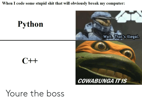 Bossing: When I code some stupid shit that will obviously break my computer:  Python  Wait. That's illegal  COWABUNGA ITIS Youre the boss