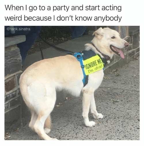 Memes, Party, and Weird: When I go to a party and start acting  weird because l don't know anybody  @tank.sinatra