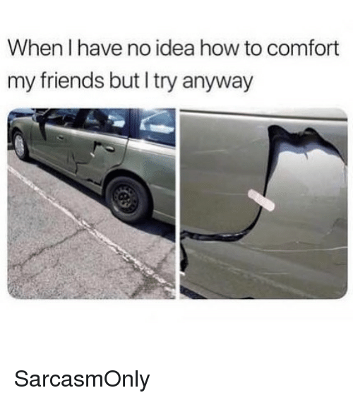 Friends, Funny, and Memes: When I have no idea how to comfort  my friends but I try anyway SarcasmOnly