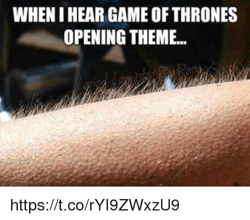 Game of Thrones, Memes, and Game: WHEN I HEAR GAME OF THRONES  OPENING THEME... https://t.co/rYI9ZWxzU9