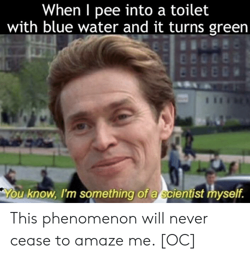 amaze: When I pee into a toilet  with blue water and it turns green  u know, I'm something of a scientist myself. This phenomenon will never cease to amaze me. [OC]