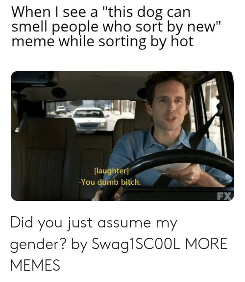 "Bitch, Dank, and Dumb: When I see a ""this dog can  smell people who sort by new""  meme while sorting by hot  laughter]  -You dumb bitch.  FX Did you just assume my gender? by Swag1SC00L MORE MEMES"