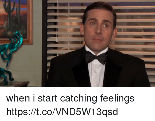 Girl Memes, Feelings, and Catching Feelings: when i start catching feelings https://t.co/VND5W13qsd