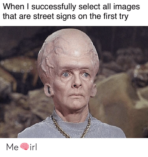 First Try: When I successfully select all images  that are street signs on the first try Me🧠irl