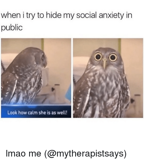 Lmao, Memes, and Anxiety: when i try to hide my social anxiety in  public  Look how calm she is as well! lmao me (@mytherapistsays)